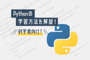 【未経験向け】Pythonの勉強・学習方法を解説!プログラミング初学者必見!